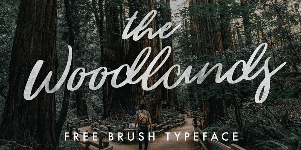 The Woodlands Free Brush Script